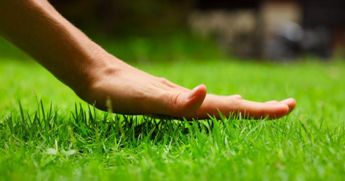 woman touching grass